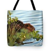 Wet Beaver Tote Bag