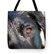 Wet Black Lab Tote Bag
