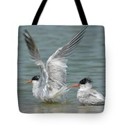 Wet Heads Tote Bag