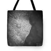 Wet Kisses Tote Bag