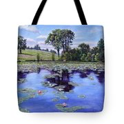 Wet Land - Shaw Nature Reserve Tote Bag
