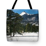 Wet Mountain Valley In Winter Tote Bag