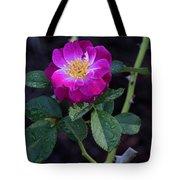Wet Rose 2 Tote Bag