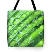 Wet Sago Tote Bag