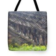 Wet Vineyard Tote Bag