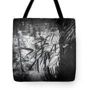 Wet Winter Tote Bag
