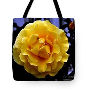 Wet Yellow Rose  Tote Bag