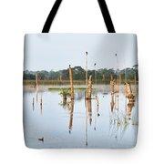 Wetlands At Sunrise Tote Bag