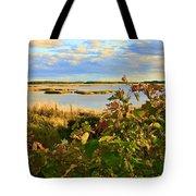 Wetlands In Cape Breton Tote Bag