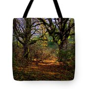 Wetlands In The Fall Tote Bag