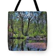 Wetlands Lake Tote Bag