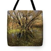 Wetlands Mirror Reflection Tote Bag
