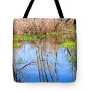 Wetlands Viewing Area In Chatfield State Park Tote Bag