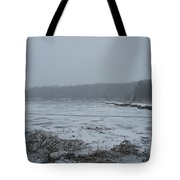 Weymouth Back River In A Snow Storm Tote Bag