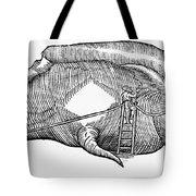 Whale, 1577 Tote Bag