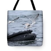 Whale-boarding Tote Bag