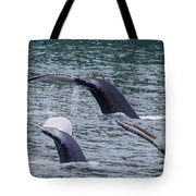 Whale Of Tales Tote Bag