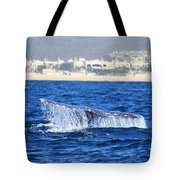 Whale Tail In Cabo Tote Bag