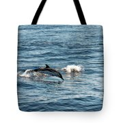 Whale Watching And Dolphins 1 Tote Bag
