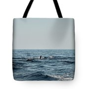 Whale Watching And Dolphins 2 Tote Bag