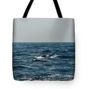 Whale Watching And Dolphins 3 Tote Bag