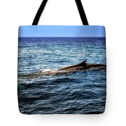 Whale Watching Balenottera Comune 4 Tote Bag