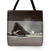 Whales Feeding Tote Bag