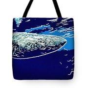 Whaleshark  Tote Bag