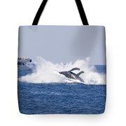 Whalewatcher Show Tote Bag
