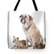 What A Group Tote Bag