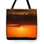 What A Sight Tote Bag