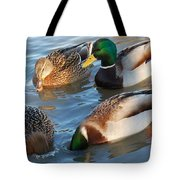 What Are They Going On? Tote Bag