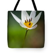 What Came To Mind Tote Bag