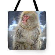 What Did You Just Say? Tote Bag
