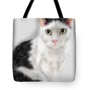 What Did You Say Tote Bag