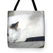 What Do Cats Dream Of #2 Tote Bag
