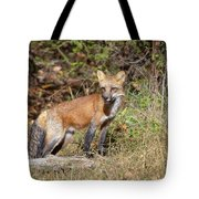 What Does The Fox Say Tote Bag