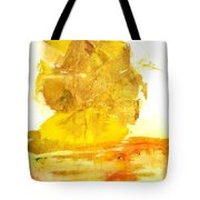 What Have We Done Tote Bag