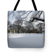What I Love About Winter Tote Bag