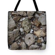 What The Tide Brings In Tote Bag