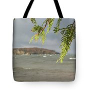 What To Focus Tote Bag