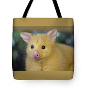 What Was That? Tote Bag