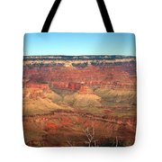 Whata View Tote Bag