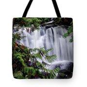 Whatcom Falls Cascade Tote Bag