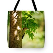 Whats A Woodpecker To Do Tote Bag