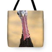 What's Christmas? Tote Bag