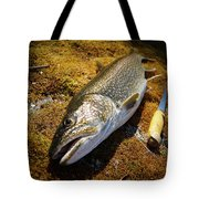 Whats For Dinner? Tote Bag