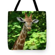 What's On Tote Bag