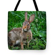 Whats Up Doc Tote Bag