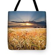 Wheat At Sunset Tote Bag